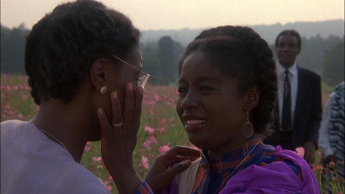 the color purple movie essays Free college essay color purple: compare and contrast novel with movie steffanie miller sophomore honors colloquium 11:00-11:50 compare and contrast of the color.