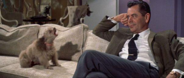 the_courtship_of_eddies_father_glenn_ford_dog