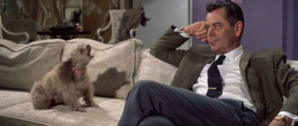 the_courtship_of_eddies_father_glenn_ford_dog