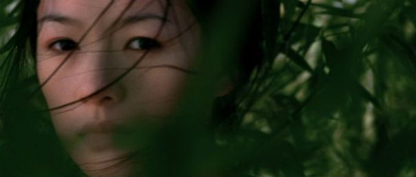 crouching_tiger_hidden_dragon_zhang_ziyi5