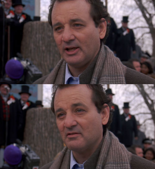 Groundhog Day Movie Quotes Entrancing Movie Quote Of The Day  Groundhog Day 1993 Dirharold Ramis
